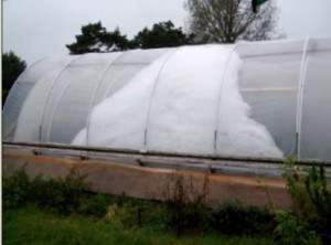 Bubble insulated greenhouse
